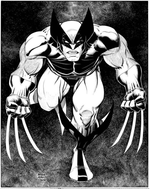 Wolverine by Arthur Adams.